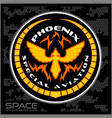 space batlmilitary chevron vector image