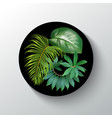 tropical plants round banner vector image
