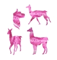 watercolor silhouettes of a lama vector image vector image
