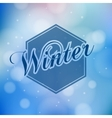 Winter lettering - calligraphy modern vector image vector image