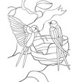 adult coloring bookpage two swallos in the nest vector image