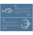 bass fish and crab posters set vector image