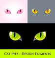 Cat eyes vector image