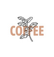 coffee outline branch with text vector image vector image