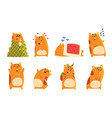 cute cartoon hamster characters set funny animal vector image