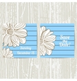 Hand Drawn Camomiles Postcards vector image