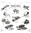 hand drawn set with Dessert Spices vector image vector image