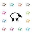 isolated sheep icon ewe element can be vector image vector image