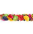 multy fruit mix juice splash vector image