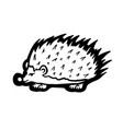 painted hedgehog vector image