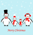 Penguins family icon vector image vector image