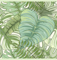 seamless tropical palm leaves pattern vector image vector image