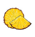 unpeeled round and wedge cut pineapple slices vector image vector image