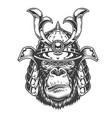 vintage serious gorilla warrior vector image