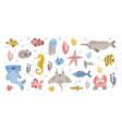 bundle of happy adorable marine animals - narwhal vector image