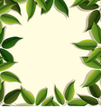 Frame design with green leaves vector image vector image
