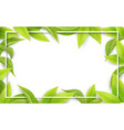green leaves on white background place for text vector image vector image