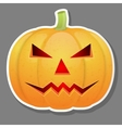 Halloween pumpkin isolated on grey background vector image