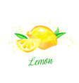 lemon watercolor imitation design with paint vector image vector image
