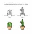 linear and coloren cactus icon vector image