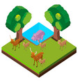 wild deers and hippo in forest vector image vector image