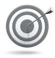 Arrows hitting the center of the grey target vector image vector image