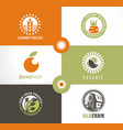 organic vegetables fresh products logo vector image vector image