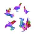 silhouettes a bird grouse vector image vector image