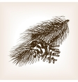 Pine branch sketch style