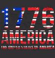 american grunge flag an grunge flag vector image vector image