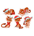 cute baby tiger character in christmas hat vector image