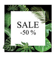frame with leaves tropical plants frame vector image vector image