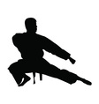 Karate man silhouette vector image vector image