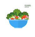 salad bowl salad ingredients vegan menu food vector image