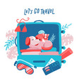 travel suitcase with dog cat and hamster vector image vector image