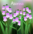 Beautiful Flower of Azorina Flower with Green vector image vector image