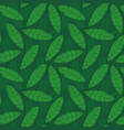 pattern from tropical leaves and plants vector image vector image