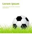 soccer ball grass vector image