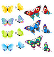 set of multi-colored butterflies insects are a vector image
