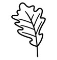 dry leaves design vector image vector image
