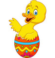 duckling coming out of an easter egg vector image vector image