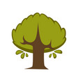 green tree flat icon eco nature symbol of vector image