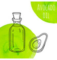 hand drawn avocado oil bottle with green vector image