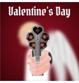 Happy Valentines Day Cupid carries a gun vector image vector image