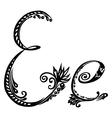 letter E e vector image vector image