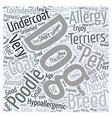list of hypoallergenic dogs dlvy nicheblowercom vector image vector image