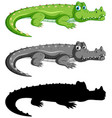 set crocodile on white background vector image
