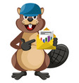beaver with blue hat on white background vector image vector image