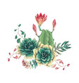 card with cactuses and succulents set plants of vector image vector image