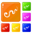 desert snake icons set color vector image vector image